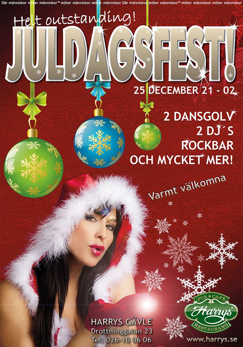 juldagsfest 2013 700x1000mm